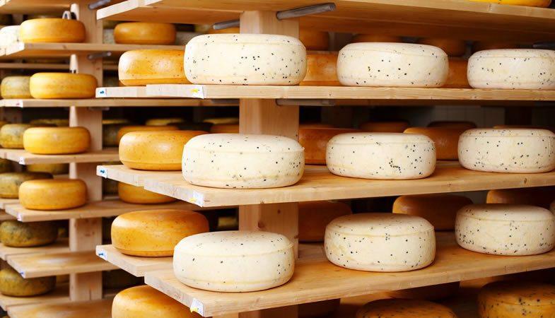 Exportación de quesos chilenos se incremento en un 37% este 2019